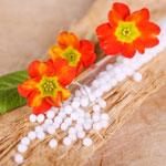 weiter zum Artikel - Was ist Homöopathie