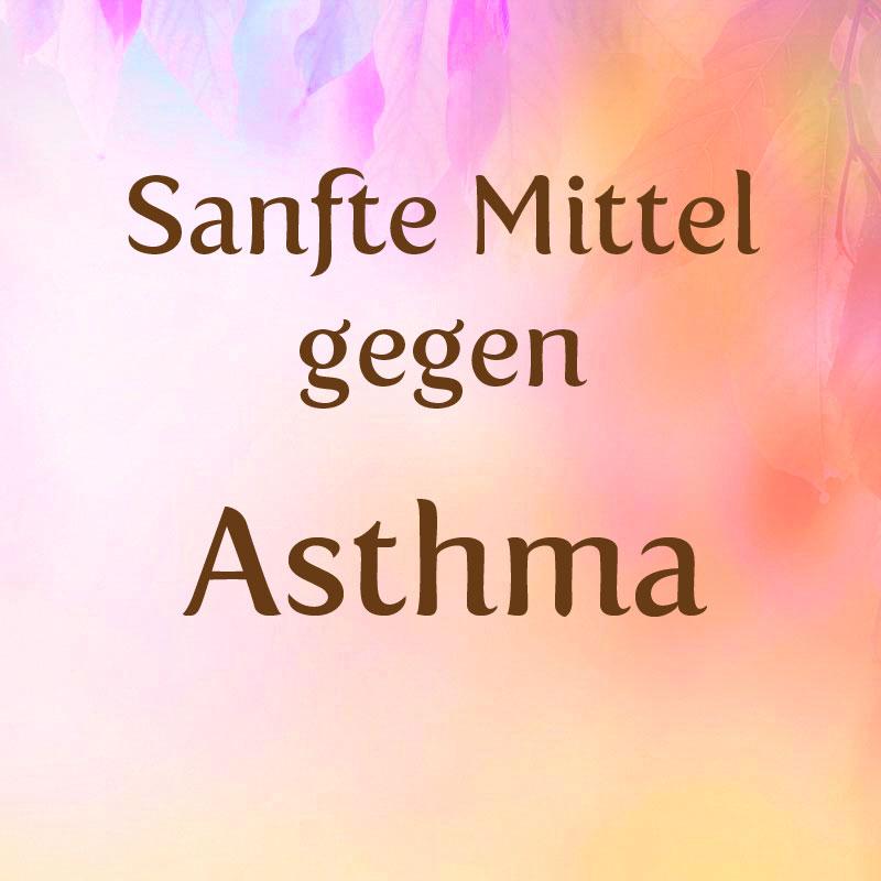 was hilft gegen asthma sanfte mittel hausmittel gegen asthma. Black Bedroom Furniture Sets. Home Design Ideas