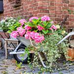 weiter zu -Deko-Ideen für den Garten