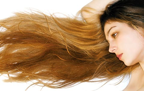 shampoo zum selber machen lindenbl ten shampoo f r trockenes haar. Black Bedroom Furniture Sets. Home Design Ideas
